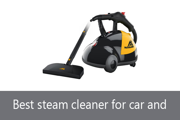 Best steam cleaner for car and home